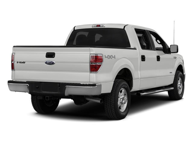 2014 ford f 150 platinum for sale daytona beach fl. Black Bedroom Furniture Sets. Home Design Ideas